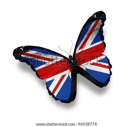 English flag butterfly, isolated on white - stock photo