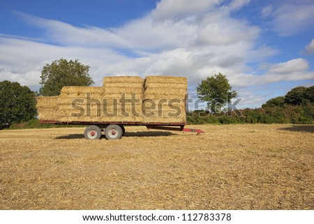 english late summer agricultural landscape with a trailer full of straw bales in a stubble field with trees and cloudy blue sky background
