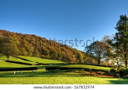 English rural scene in autumn - stock photo
