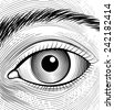 Engraving human eye. Sketch eyes closeup on a white background - stock vector