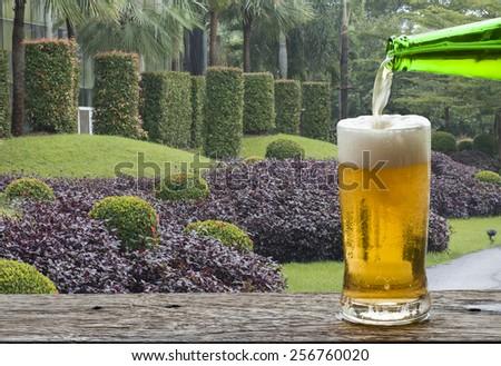 Enjoy beer in plant garden.  - stock photo