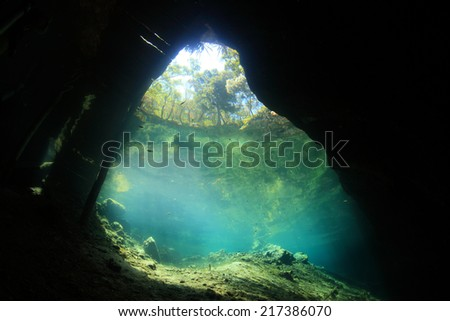 Entrance area of cenote underwater cave from below  - stock photo