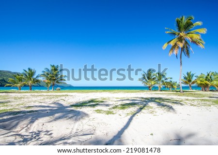 Entrance to one of the most beautiful tropical beaches in Caribbean, Playa Rincon, near Las Terrenas in Dominican Republic, with palm trees shadows and amazing sea - stock photo