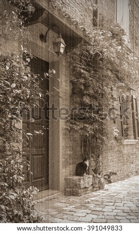 Entrance to the old Italian house and the cat on the doorstep. Old style, sepia
