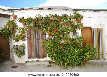 Entrance to the old spanish house and potted flowers. - stock photo