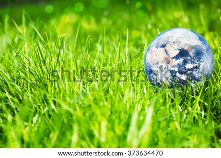 Environment concept, earth globe in the grass background. Elements of this image furnished by NASA - stock photo