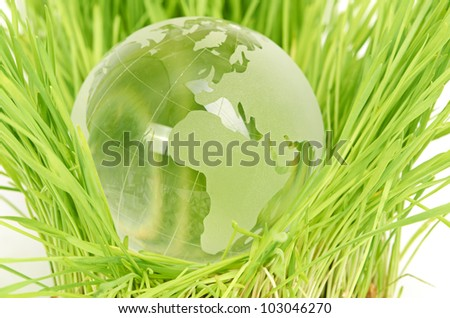 Environment concept, glass globe in the grass - stock photo