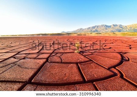 environmental and soil pollution - stock photo