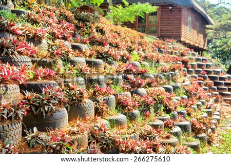 Environmental flower bed-wall. Shot on Durban, South Africa.