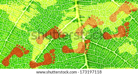 Environmental Footprints on a Map of the World on a Green Leaf- original image of Earth from NASA - stock photo