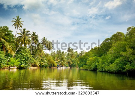 Equatorial forest and boats on the lake