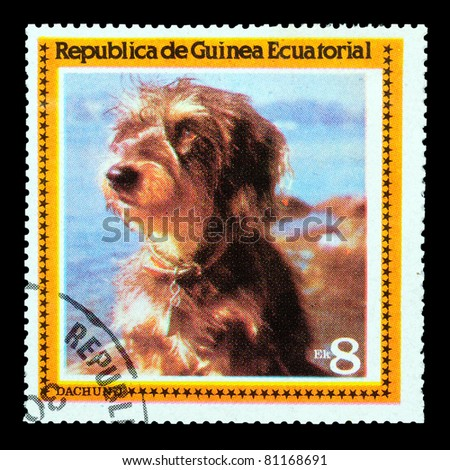 EQUATORIAL GUINEA - CIRCA 1978: A stamp printed by EQUATORIAL GUINEA shows a dog Dachund, circa 1978 - stock photo
