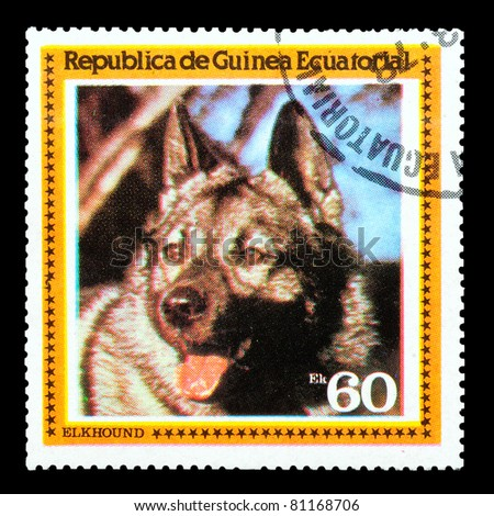 EQUATORIAL GUINEA - CIRCA 1978: A stamp printed by EQUATORIAL GUINEA shows a dog Elkhound, circa 1978 - stock photo
