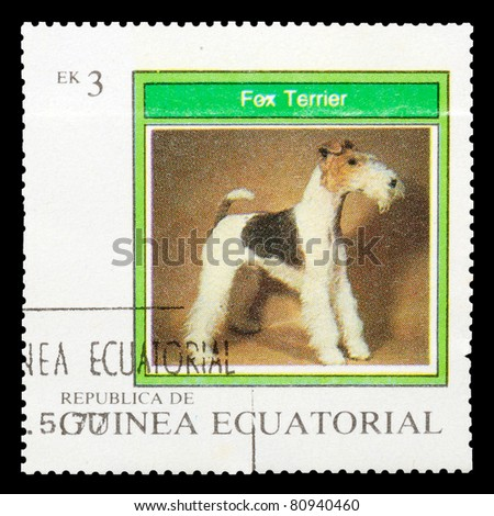 EQUATORIAL GUINEA - CIRCA 1977: A stamp printed by EQUATORIAL GUINEA shows a dog Fox Terrier, series, circa 1977 - stock photo