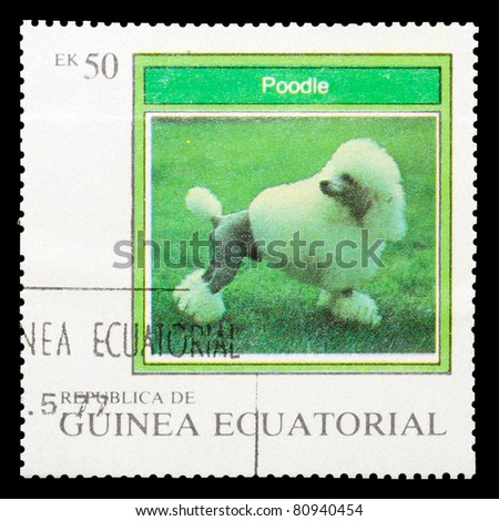 EQUATORIAL GUINEA - CIRCA 1977: A stamp printed by EQUATORIAL GUINEA shows a dog Poodle, series, circa 1977 - stock photo