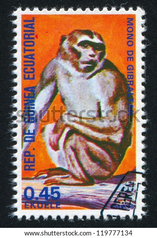 EQUATORIAL GUINEA - CIRCA 1972: stamp printed by Equatorial Guinea, shows Barbary macaque, circa 1972 - stock photo
