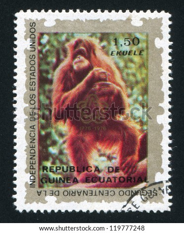 EQUATORIAL GUINEA - CIRCA 1972: stamp printed by Equatorial Guinea, shows Orangutan, circa 1972 - stock photo