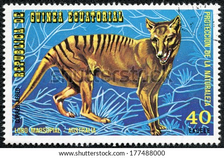 EQUATORIAL GUINEA - CIRCA 1974: Stamp printed in Guinea dedicated to endangered animals, shows Tasmanian Tiger, Australia, circa 1974 - stock photo