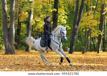 Equestrian girl galloping her horse in autumnal nature