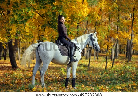 Equestrian girl on horseback in autumnal nature