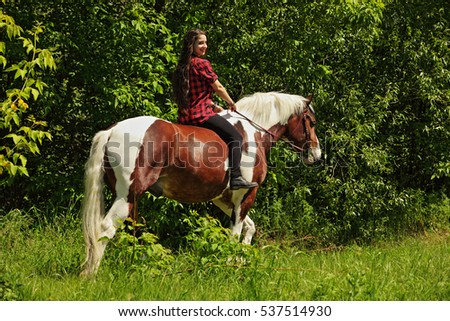 Equestrian riding horse in evening woods, in the background a summer countryside