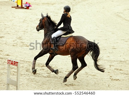 Equestrian training. Young sportswoman taking her course on Show jumping training