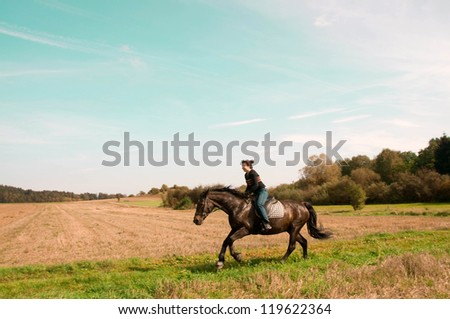 Equestrienne rides on the hillside. Hanoverian