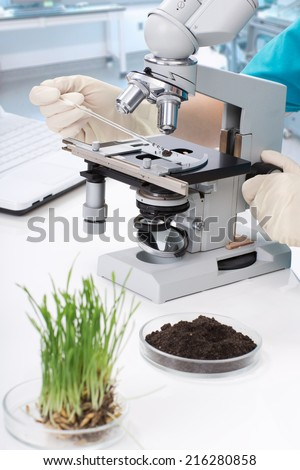 Equipment and the sample in the laboratory - stock photo
