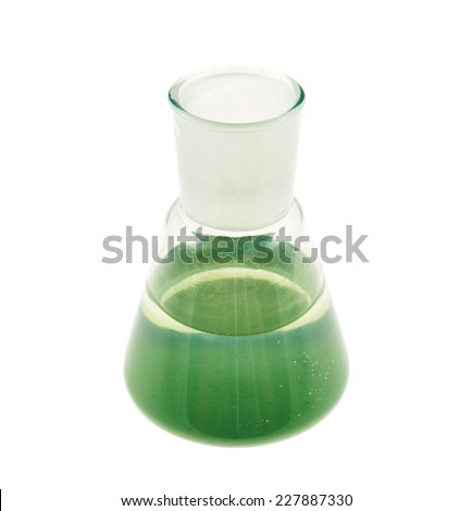 Erlenmeyer flask filled with the green colored liquid isolated over the white background - stock photo