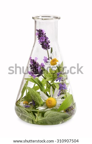 Erlenmeyer flask with medicinal herbs - stock photo