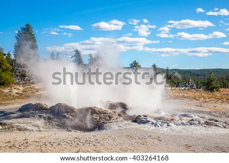 Erupting Geyser at Norris Geyser Basin, Yellowstone National Park, Jackson Hole, Wyoming USA - stock photo
