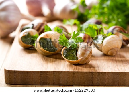 escargots with parsley on wooden table - stock photo