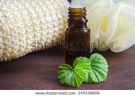 Essential geranium oil - stock photo