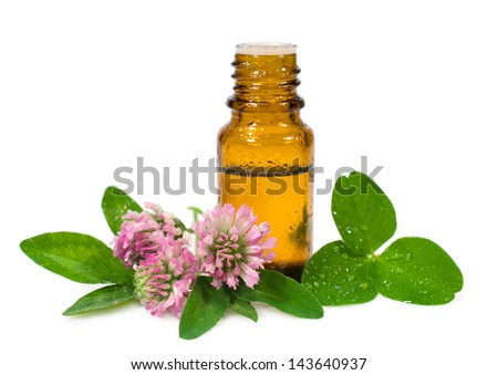 essential oil and blooming clover isolated on white
