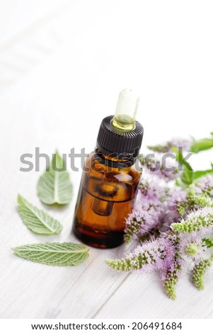 essential oil and mint - health and beauty