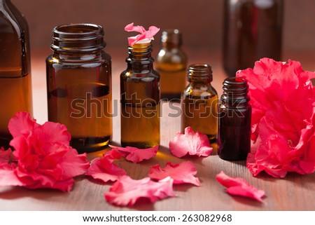 essential oil azalea flowers on dark rustic background  - stock photo