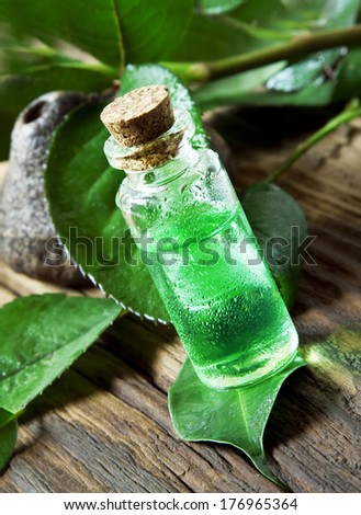 Essential Oil Bottle.Tea Tree Essence for Aromatherapy - stock photo