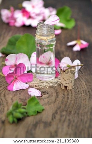 essential oil of rose geranium - stock photo