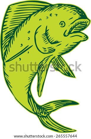 Etching engraving handmade style illustration of a dolphin fish viewed from the side jumping set on isolated white background.  - stock photo