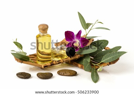Eucalyptus Essential Oil : Ingredients for cosmetics, body massage and spa.