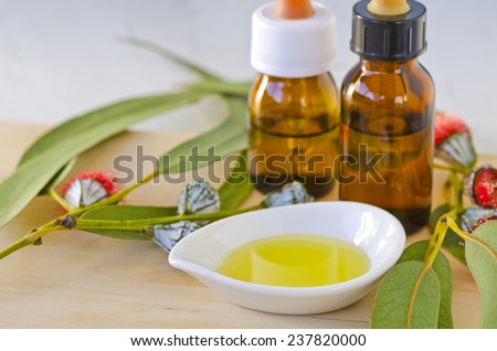 Eucalyptus leaves and essential oil on wooden cutting board. Selective focus. Taken in daylight. - stock photo