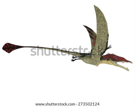 Eudimorphodon over White - Eudimorphodon was a predatory flying reptile that lived in the Triassic Period and found in Italy. - stock photo