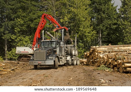 EUGENE, OR, USA - MARCH 20, 2014: A log loader or forestry machine loads a log truck at the logging site landing in southern Oregon