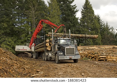 EUGENE, OR, USA - MARCH 19, 2014: A log loader or forestry machine loads the rear trailer on a log truck at the site landing in southern Oregon