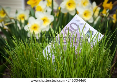 Euro banknote growing in green grass  - stock photo