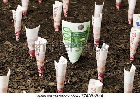Euro currency plants Finance and investment concepts - stock photo
