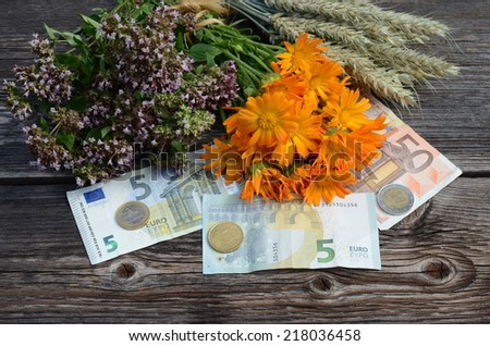 euro money and medical herbs with wheat ears on old wooden background - stock photo
