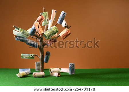 Euro paper banknotes hanging on a tree in the studio - stock photo