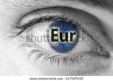 Euro sign in blue human pupil. - stock photo