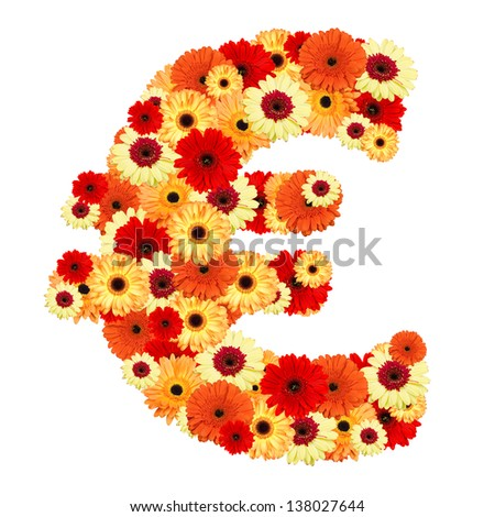 Euro sign of gerber flowers isolated on white